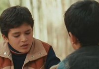 Film: Majster šarkanov / Lovec draků / The Kite Runner (2007)
