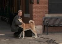 Film: Hačikó – příběh psa  / Hachiko: A Dog's Story / Hachi: A Dog's Tale (2009)