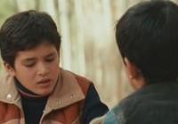 Film: Majster šarkanov / Lovec draků / The Kite Runner (2007)