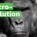 Dokument: Achillove päty evolúcie